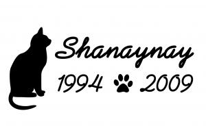 shanaynay-grave