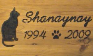 shanaynay-wood-burn
