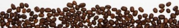 coffee bean frame bottom