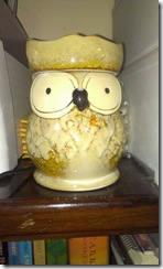 Be Fragrant owl soy candle
