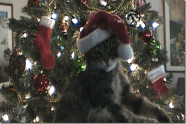 Christmas 2007-1