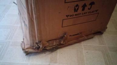 schwinn box 2
